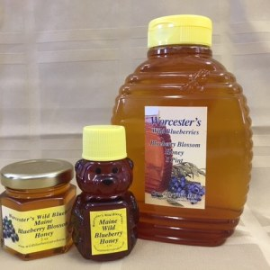 Blueberry Blosson Honey - Worcester's Wild Blueberries